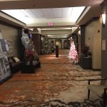 Bilde fra MeadowView Conference Resort & Convention Center