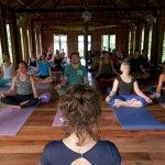 Shala (2 yoga courses per day)