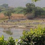 Photo of Shikarbadi