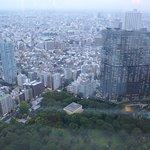 Photo of Tokyo Metropolitan Government Buildings