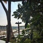 Photo de Les 3 Elephants Cherai Beach