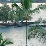 Photo of Coconut Island