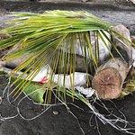 Bilde fra Rosie Holidays Fiji