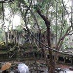 Foto de Banteay Srei