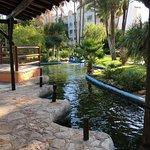 Photo of Protur Safari Park Aparthotel