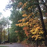 Fall hits the campgrounds