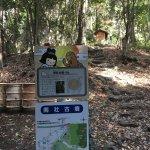 Photo de Mt. Togoku Fruits Park