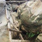 St. Anthony Gorge Foto