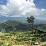 Photo of Madulkelle Tea and Eco Lodge