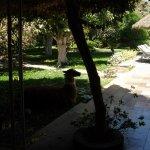 Garden view of Hotel Majora, Nazca