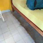 Photo of Mini-Hotel VillaWatuna