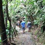 Walking tour at Jungle Breeze