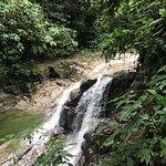 Waterfall, Veragua Rainforest