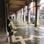 Markusdom (Basilica di San Marco) Foto