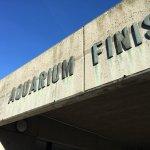 Photo of Aquarium Finisterrae