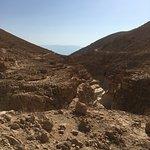 Photo of En Gedi Nature Reserve