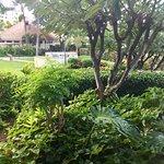 Zdjęcie Marriott Ko Olina Beach Club