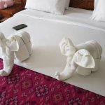 Every day they made us nice towel animals :)
