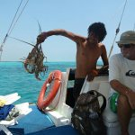 No Rush Sailing Tours