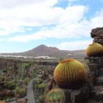 Photo de Jardin de Cactus