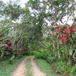 Foto de Hacienda San Vicente