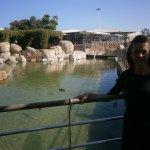 Lago de los pelicanos.