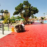Photo de Hotel Olé Tropical