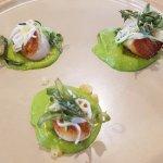 Pan seared scallops - zucchini puree, preserved lemon, saltbush