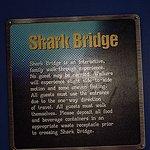 Walk the Shark Bridge