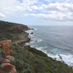 Foto di Margaret River Discovery Co. Tours