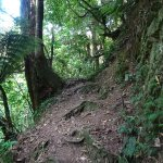 Trails may be steep, narrow, full of rocks or tree roots