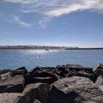 Rock jetty looking toward the dog beach