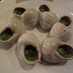 Photo de The Petit Snail