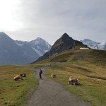Photo of Kleine Scheidegg