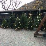 Braugarten Forst - Giardino Forst all'aperto Foto