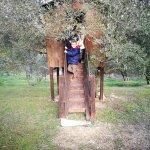 Photo of Agriturismo Olivastrella