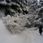 Photo of Lake Golcuk