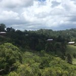 Foto di Maleny Tropical Retreat
