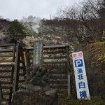 Foto de Shirakaba