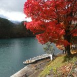 Photo of Goshikinuma Lake