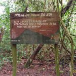 Foto de Ilha Anchieta State Park