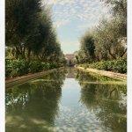 Foto di Club Med Marrakech La Palmeraie
