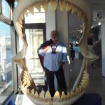 Eaten by Megalodon Carcharidae !