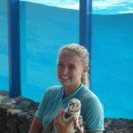 Photo of Sea Life Park Hawaii