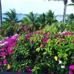 Wananavu Beach Resort Foto