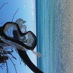 Photo of Waialea Beach