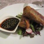 Nem's au foie gras