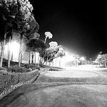 Photo de Carya Golf Club