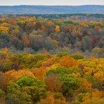 Fall color, Garden of the Gods