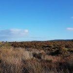 Photo de Culloden Battlefield